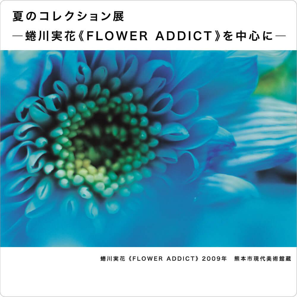 夏のコレクション展  ―蜷川実花《FLOWER ADDICT》を中心に―